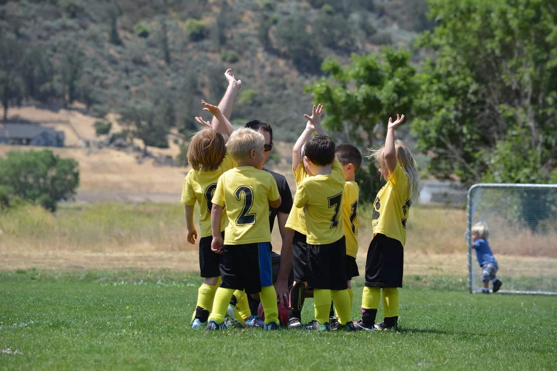 Quel est l'importance du sport à l'école ?
